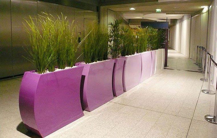 contenedores plantas grandes rosa interior