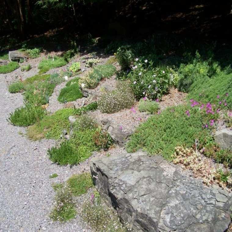 decoracion natural paisajismo rocas