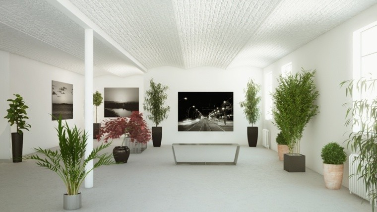 decoración de interiores con plantas macetas diseño salon