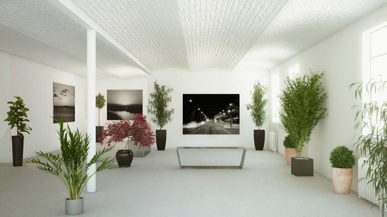 Decoraci n de interiores con plantas reg late bienestar - Macetas para plantas de interior ...