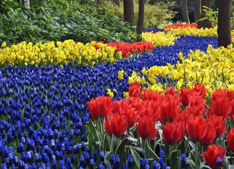 decoracion de jardines tulipanes primavera
