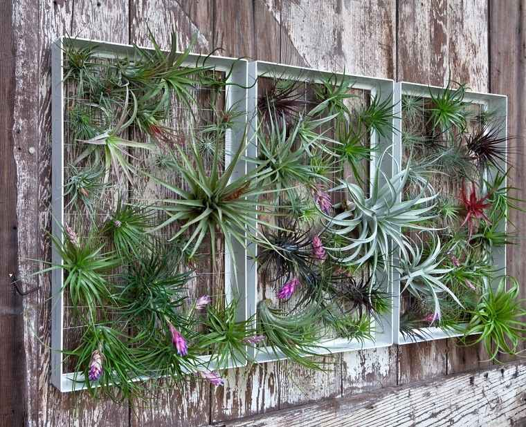 decoracion terrazas jardin vertical pared