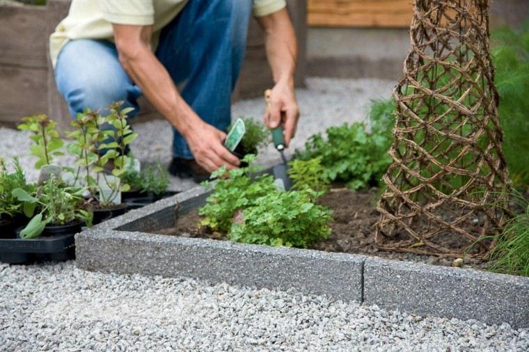diseño grava piedra jardin plantas