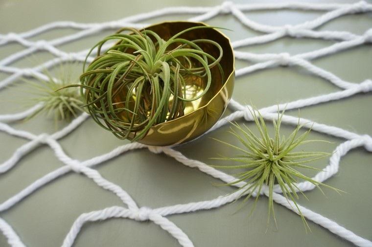 dorado planta creativo macrame cuenco dorado