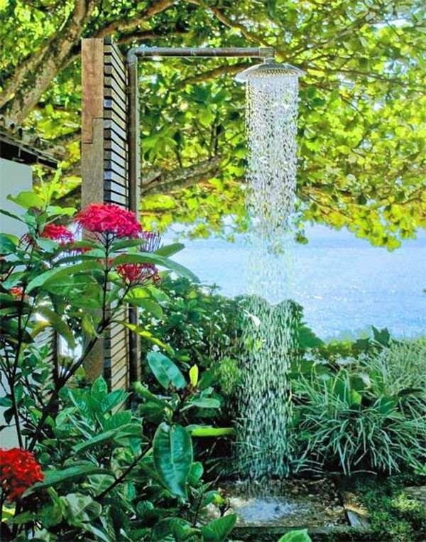 ducha jardín flores plantas