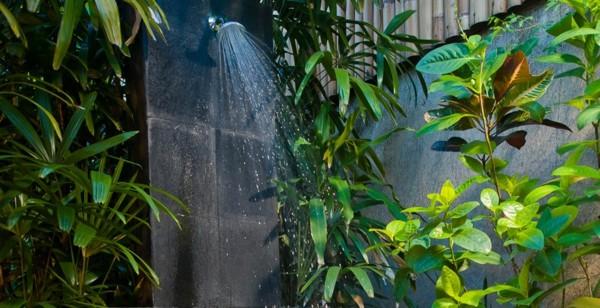 ducha jardín plantas varias negra