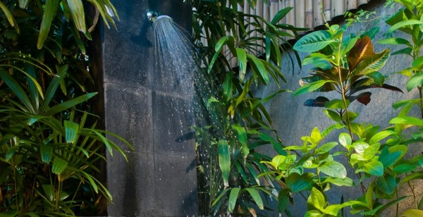 ducha jardn plantas varias negra