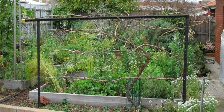 estructuras metalicas vallado plantas vid