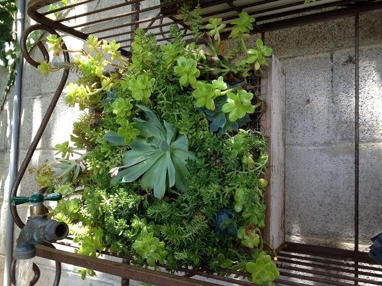 estupenda parcela jardín vertical plantas