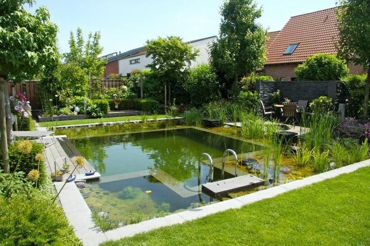 estupenda piscina natural bio plantas