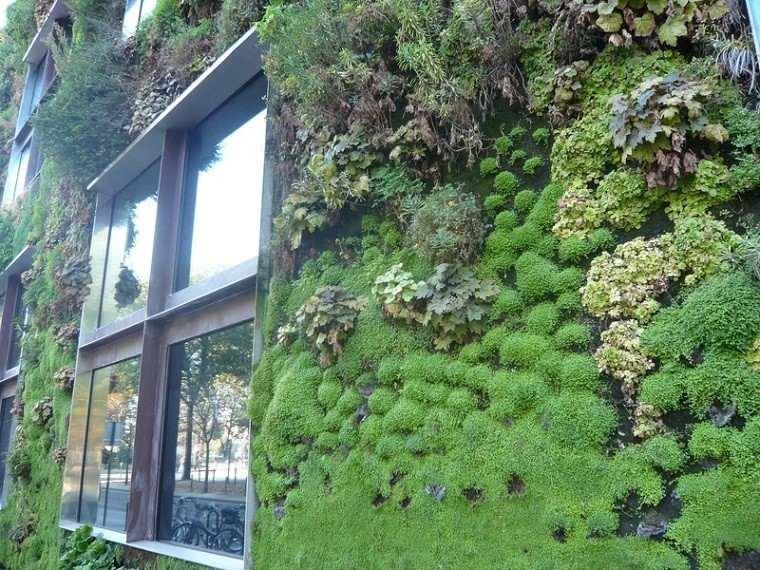 estupenda ventana pared muro plantas