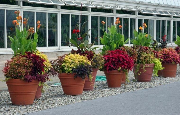 Decoracion de jardines con las flores de primavera for Decoracion salas jardin de infantes