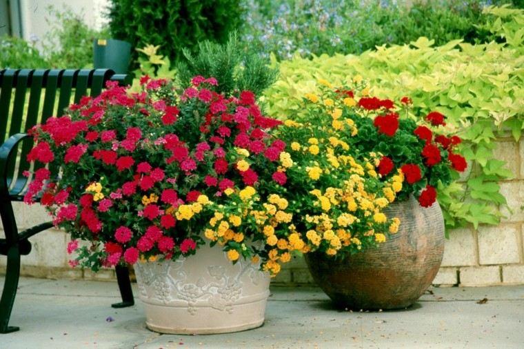 estupendos maceteros muchas flores colores