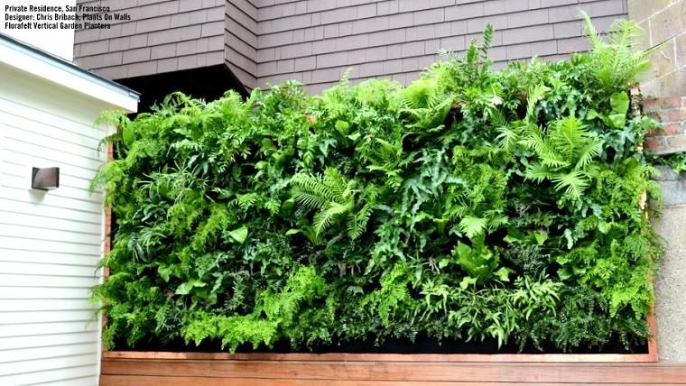 fachada jardin vertical pequeño