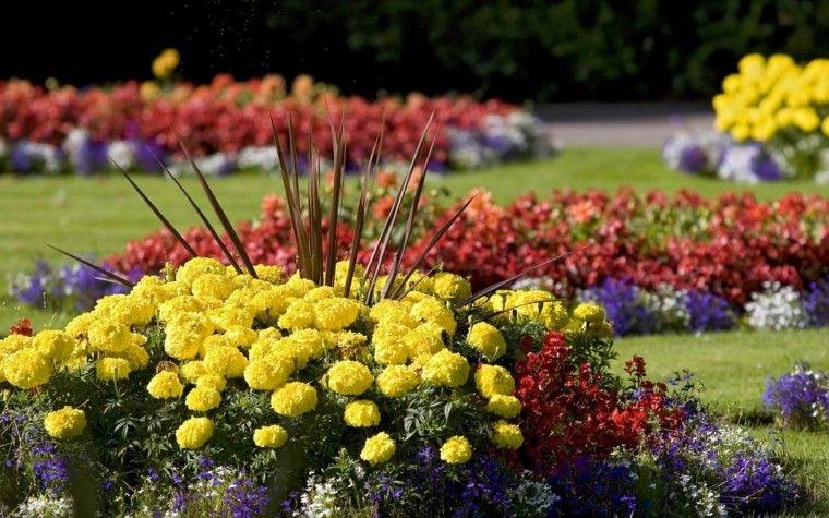 flores amarillas pequenas ideas decoracion bonita jardin amplio