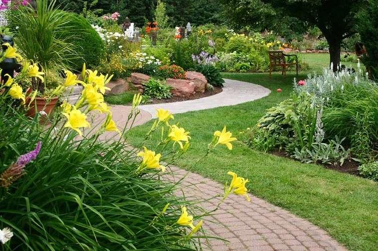 flores amarillas bonito jardin camino