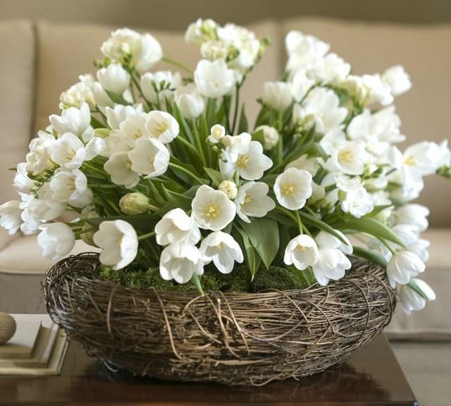 flores blancas cesto moho ideas bonito