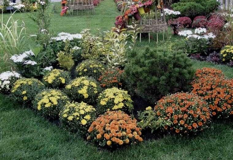flores bonitas jardin naranja amarillo combinacion ideas