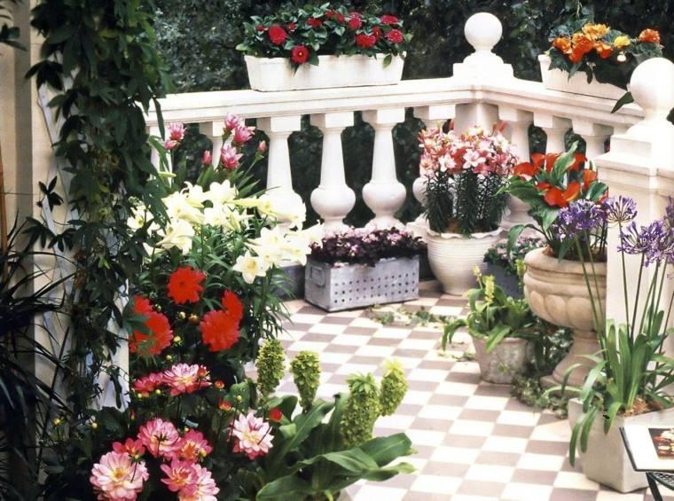 flores bonitas macetas ideas terraza moderna