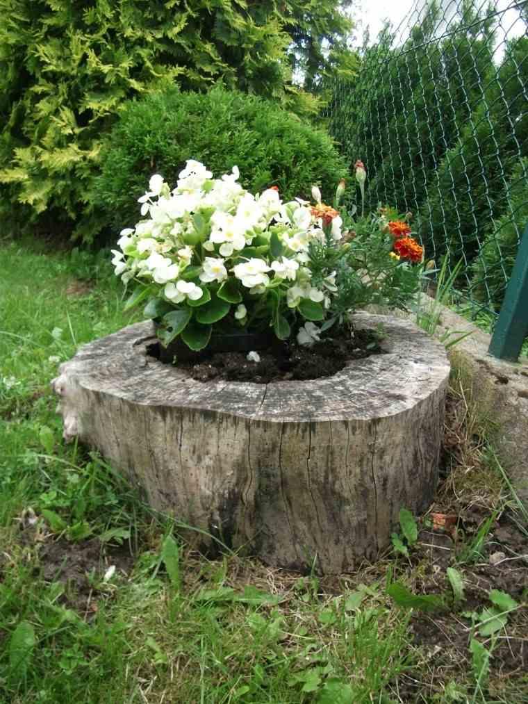 Flores bonitas que no deben faltar en el jard n - Troncos para jardin ...