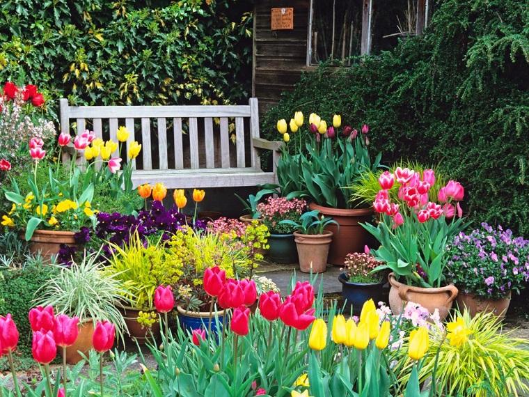 Flores bonitas que no deben faltar en el jard n - Como disenar un jardin grande ...
