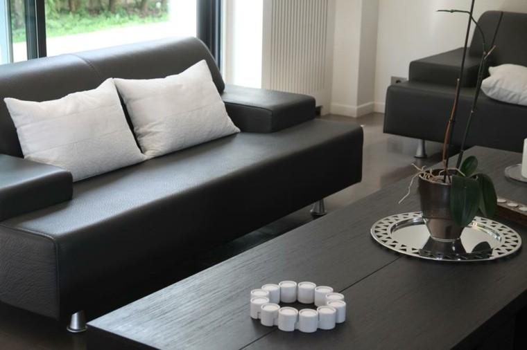ideas para decorar salones pieles accesorios planta
