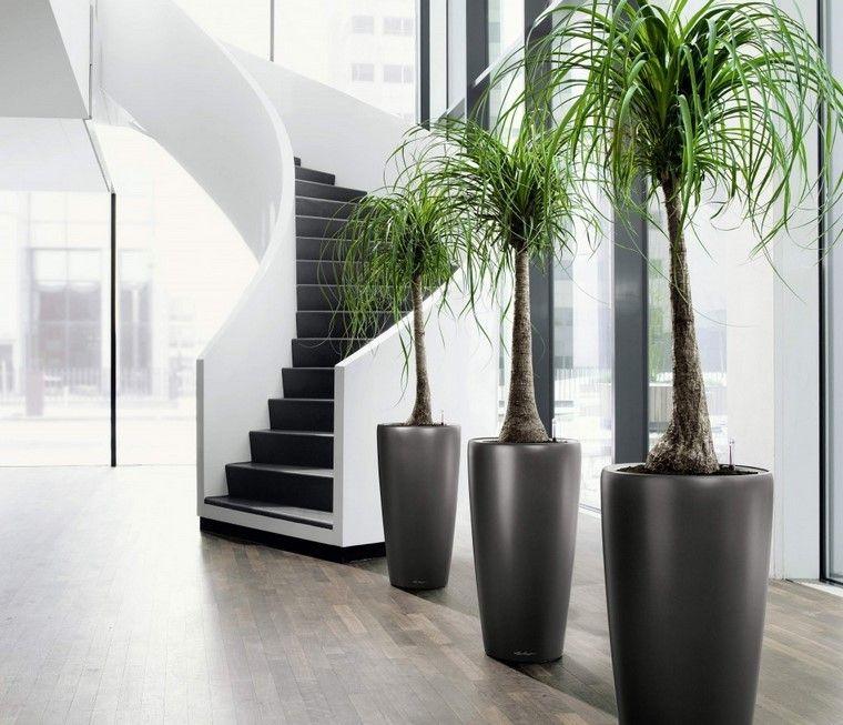 interior jardinera gris moderna plantas