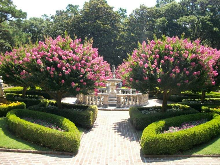 Flores bonitas que no deben faltar en el jard n - Arboles ornamentales para jardin ...