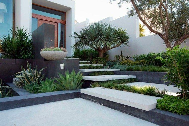 jardin escaleras hormigon plantas interesantes ideas