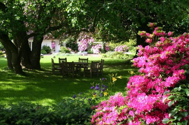 jardin grande cesped plantas lugar comidas
