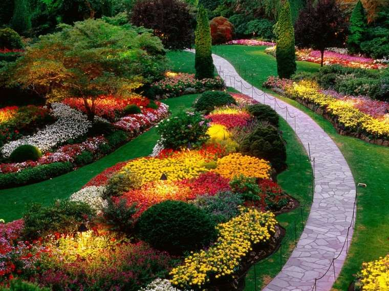 jardin grande muchas flores distintas colores ideas