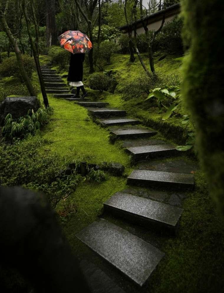 bonito jardín japonés