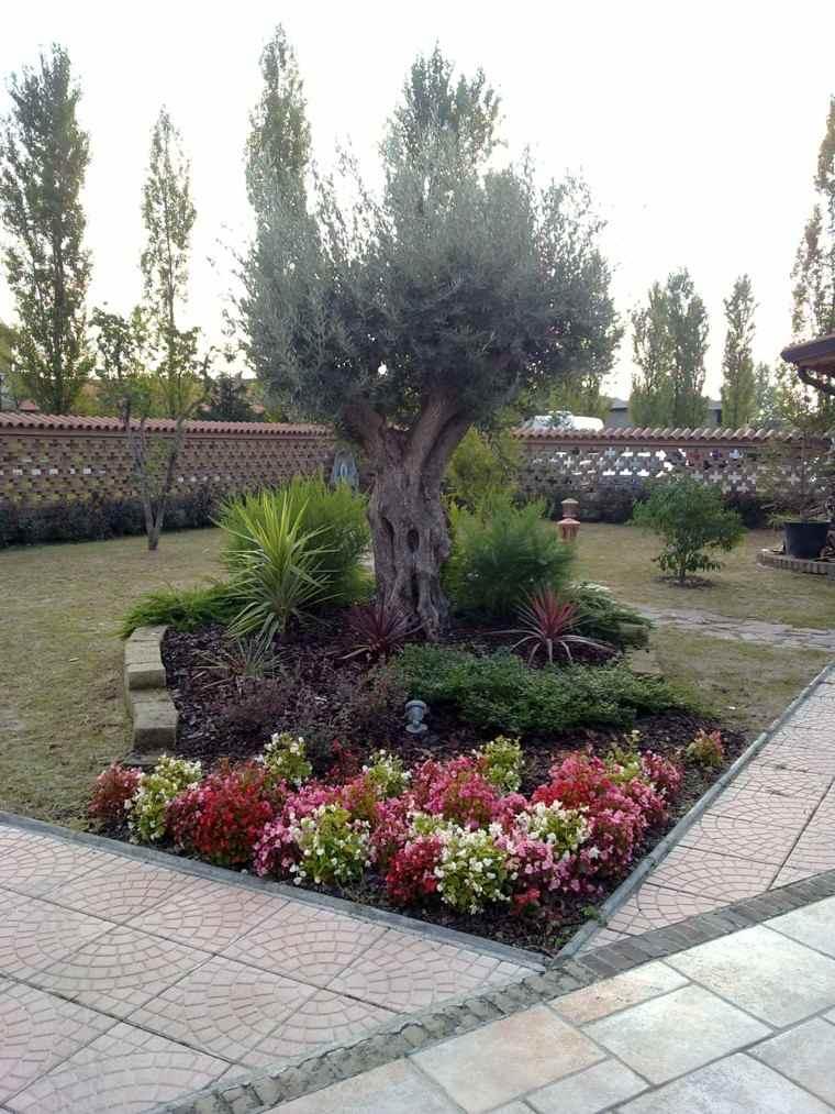 flores bonitas que no deben faltar en el jard n On arboles jardin mediterraneo