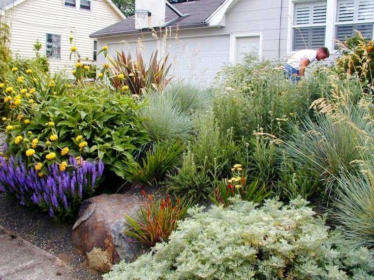 jardin mediterraneo estilo suelo seco hierbas