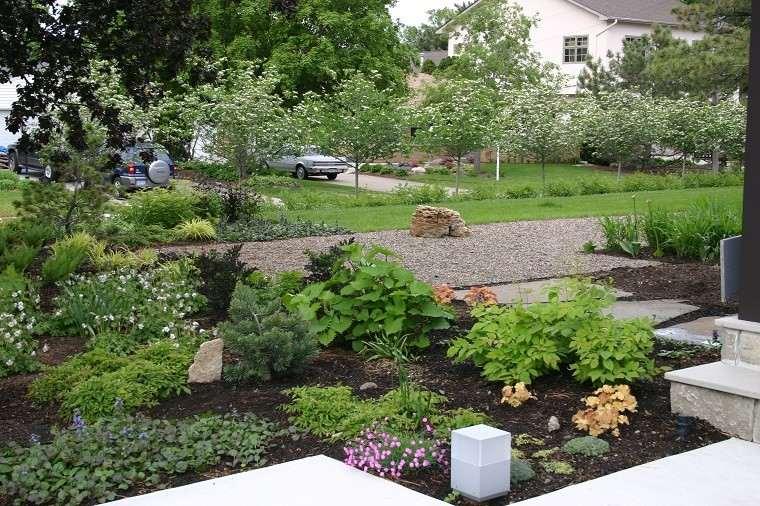 jardin patio muchas plantas luz