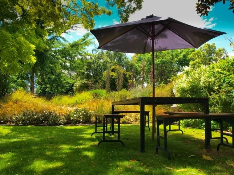 jardin plantas cesped arboles sombrilla ideas negra