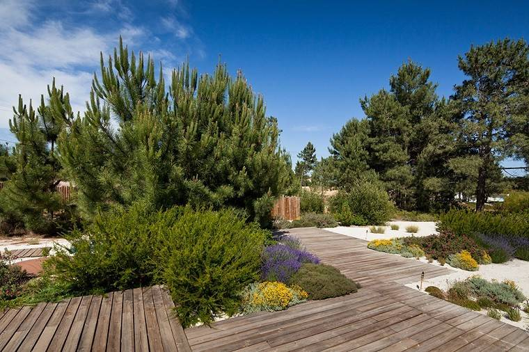 jardin camino plataforma madera