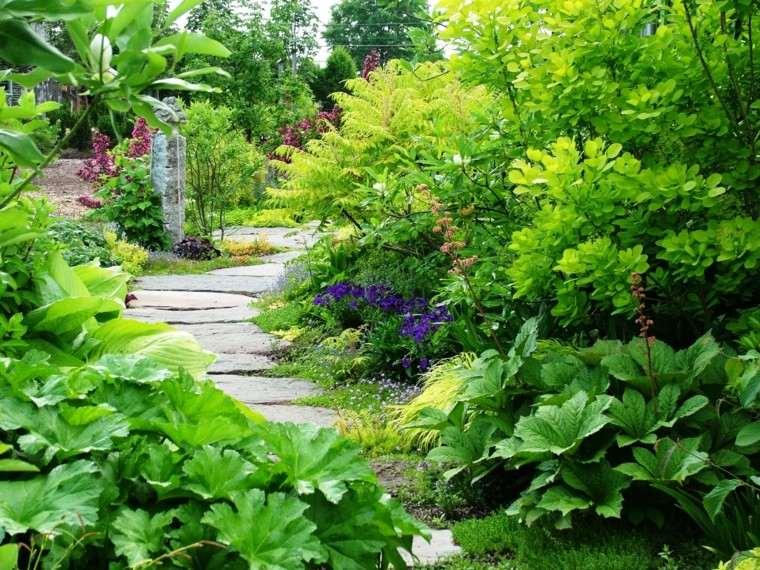 jardin sendero piedras flores plantas