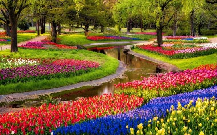 jardin-tulioanes-de-colores