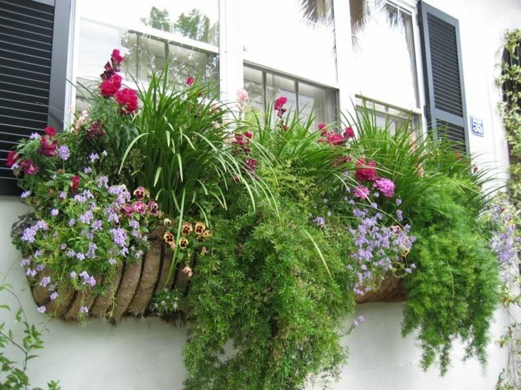 jardin ventana maceta naturalidad imagen casa idea