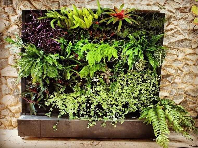 Jard n vertical naturalidad en cualquier lugar for Plantas jardin vertical exterior