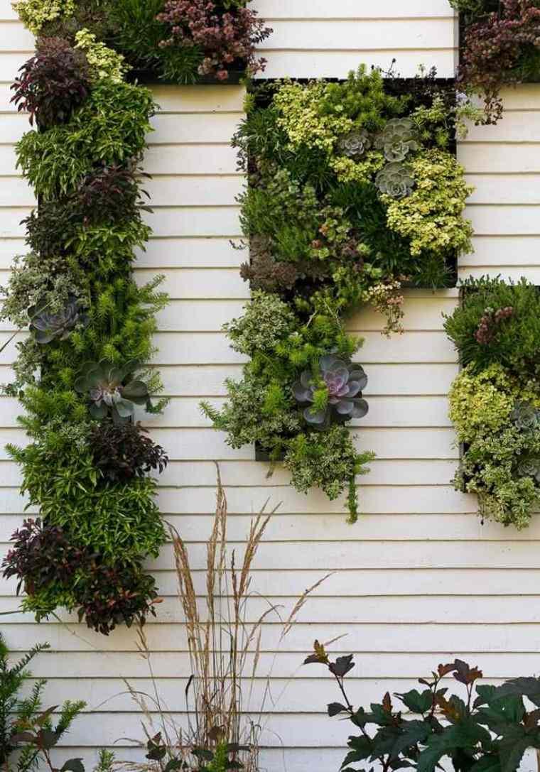 jardin vertical muro colgante suculentas