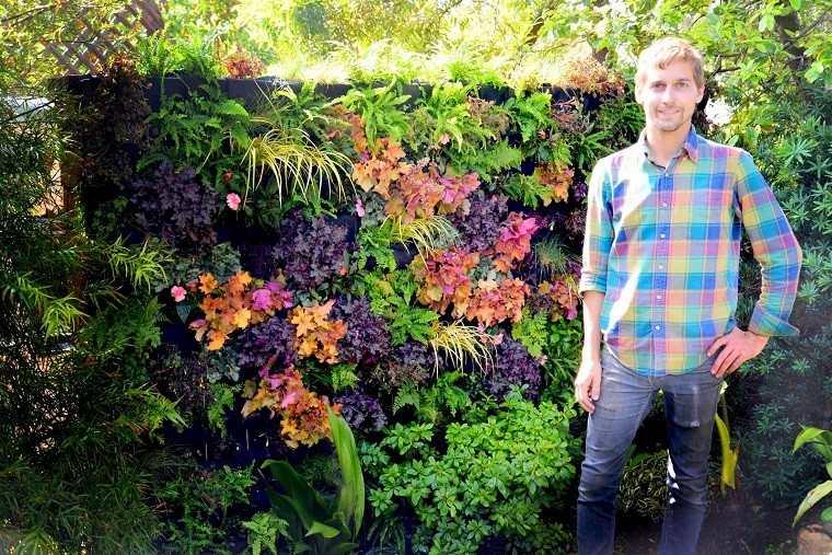 jardin vertical plantas moradas