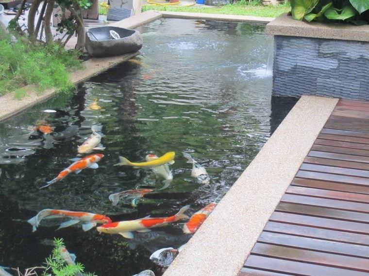 jardin y decoracion peces madera estanque plantas