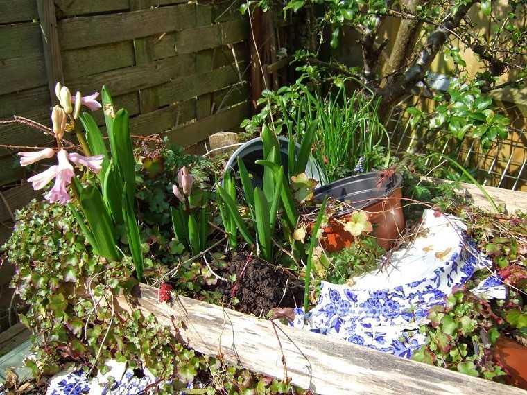 jardinera plantas trozos macetas rotas