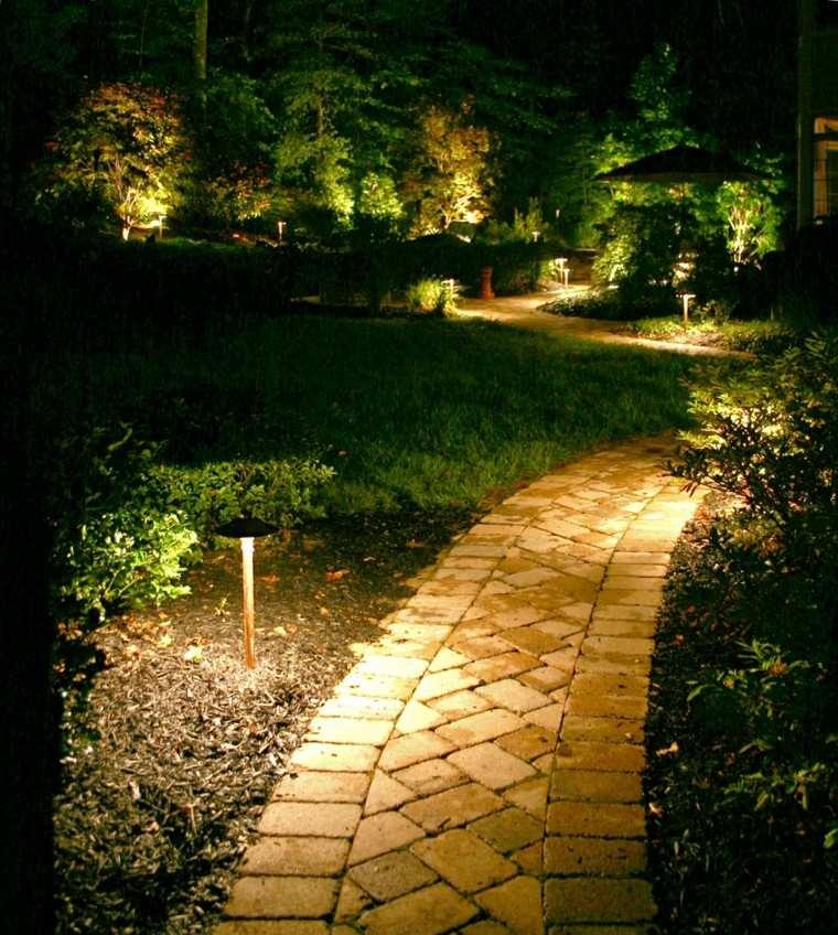 lamparas ilumnacion plantas sendero luces