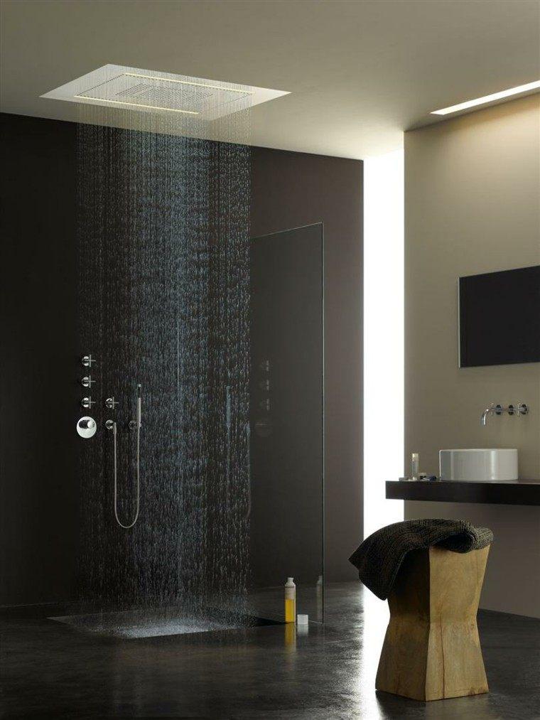 lluvia estilo lujo baño moderno
