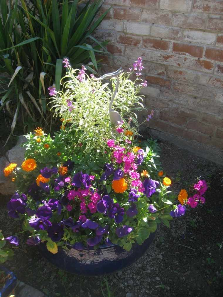 maceta muchas flores colores violetas