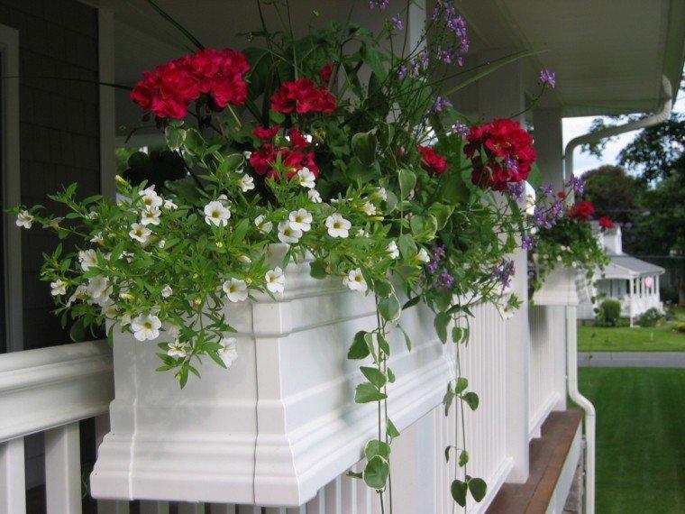 macetas colgadas valla blanca porche plantas bonito