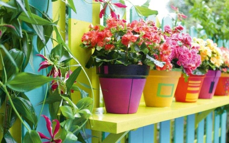 macetas colores plantas cercado llamativas